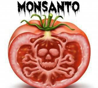 monsanto-tomato